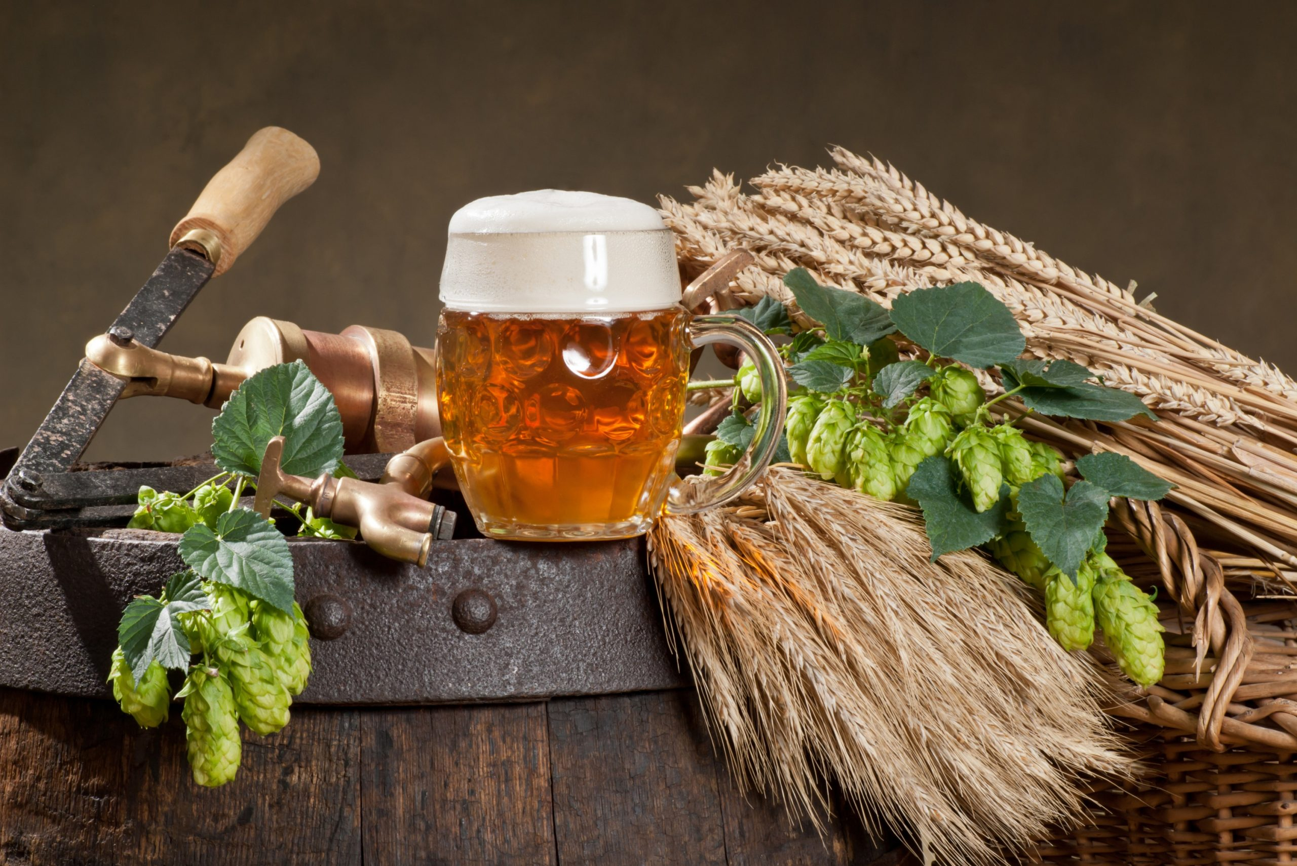 Guide To Selecting The Best Hops For The Production Of Beer
