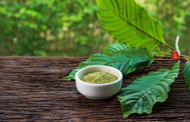 How Kratom Ruined My Life – Know the reality