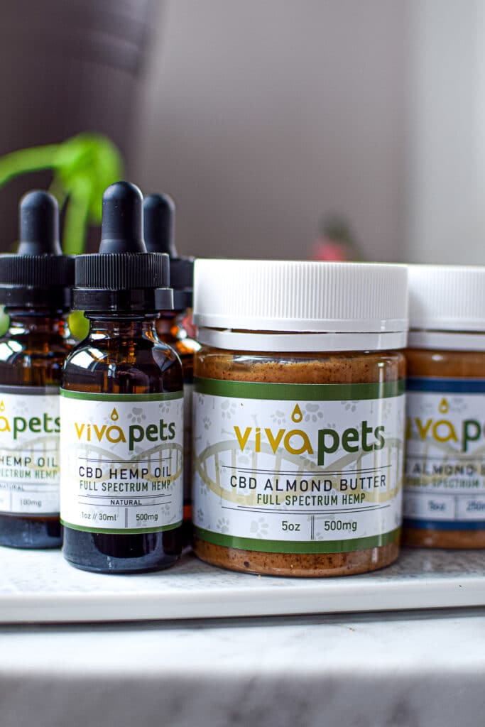 Learn Now That What Is The Best CBD For Your Dogs?