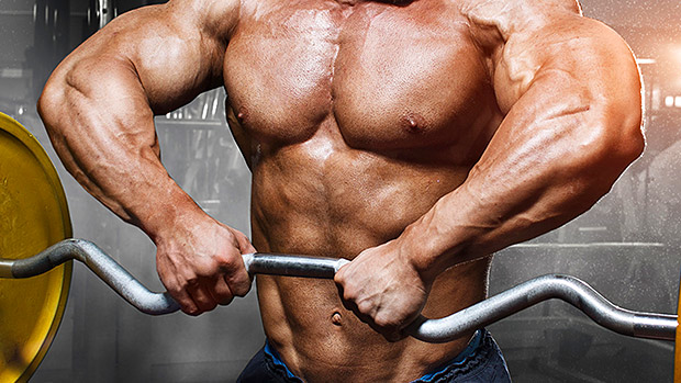 More Information On Muscle Gain Truth