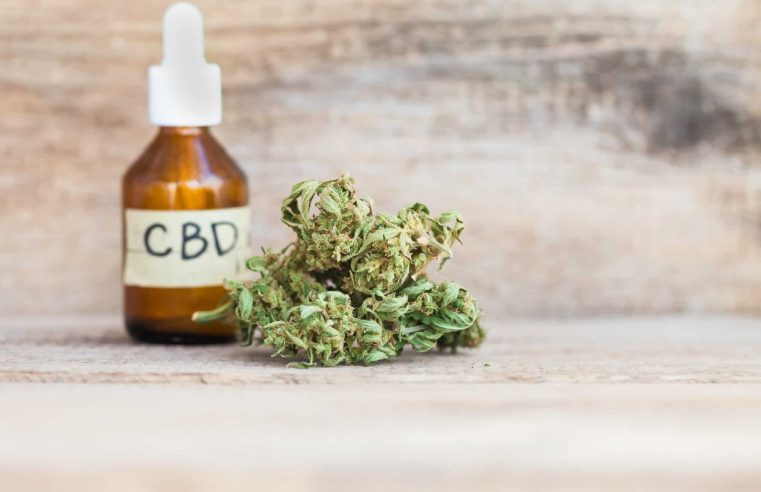CBD Oil- Chronicling Pain Issue