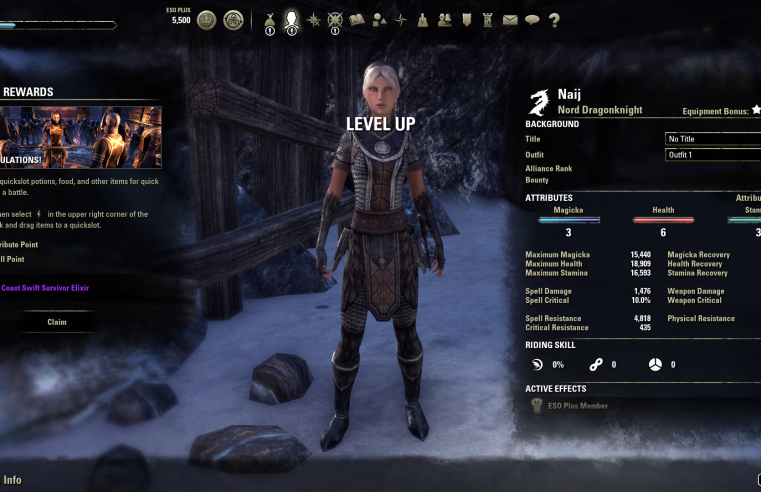 Using The ESO Power Levelling Guides For Intuitive Gameplay